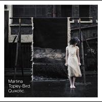 Cover of the track Quixotic