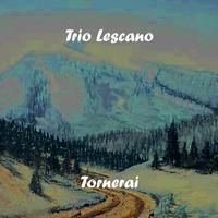 Couverture du titre Tornerai