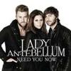 Couverture du titre Need You Now (2010 mix)