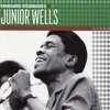 Couverture de l'album Vanguard Visionaries: Junior Wells