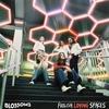 Couverture de l'album Foolish Loving Spaces