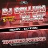 Couverture de l'album Together Forever (Easter Rave Hymn 2k16) [feat. DJ Cap] [DJ Gollum vs. NICCO]