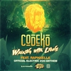 Couverture du titre Walking With Lions (Official Electric Zoo Anthem)