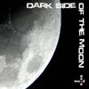 Couverture de l'album Dark Side Of The Moon