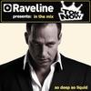 Couverture de l'album Raveline Pres. In The Mix: Tom Novy (Mixed By Tom Novy)