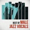 Couverture de l'album Best of Male Jazz Vocals