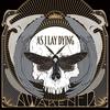 Cover of the album Awakened