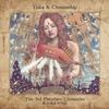 Couverture de l'album The 3rd Planetary Chronicles