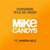 Couverture de l'album Sunshine (Fly So High) [feat. Sandra Wild] [Remixes]