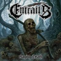 Couverture du titre Raging Death