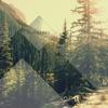 Couverture de l'album In the Woods