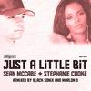 Couverture de l'album Just a Little Bit (Remixes)