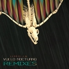 Couverture de l'album Vuelo Nocturno Remixes