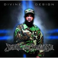 Couverture du titre Divine Design