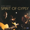 Couverture de l'album Gypsy Swing