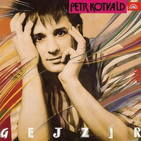 Cover of the track Gejzír