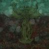 Couverture de l'album Surya