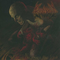 Cover of the track Nightmares Made Flesh