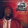 Couverture de l'album Reggae Max