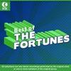 Couverture de l'album The Best of the Fortunes