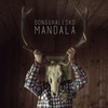 Cover of the track Mandala