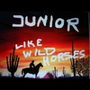 Cover of the album Like Wild Horses - Single