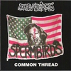 Cover of the album Common Thread