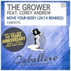 Cover of the album Move Your Body (2K14 Remixes) [feat. Corey Andrew]