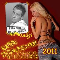 Cover of the track Deine Schwester ist ein richtig geiles Luder 2011 - Single