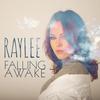 Couverture de l'album Falling Awake - Single
