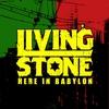 Couverture de l'album Here In Babylon