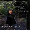 Cover of the album Indiana Rain