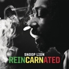 Couverture de l'album Reincarnated (Deluxe Version)