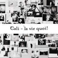 Cover of the track La Vie Quoi