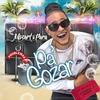 Cover of the album Pa Gozar - Single