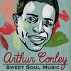 Couverture de l'album Sweet Soul Music