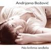 Couverture de l'album Na Krilima Andjela