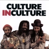 Cover of the album Culture in Culture