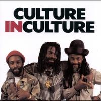Couverture du titre Culture in Culture