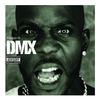 Couverture de l'album The Best of DMX