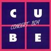 Couverture de l'album Concert Boy - Single
