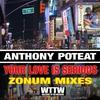 Couverture de l'album Your Love Is Serious (Zonum Mixes) - Single