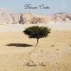 Cover of the album Phantom Pain