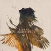 Couverture de l'album Bat
