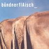 Couverture de l'album Bündnerflaisch