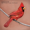 Couverture de l'album Old Crows / Young Cardinals