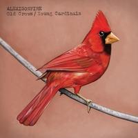 Couverture du titre Old Crows / Young Cardinals