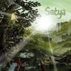 Couverture de l'album Satya