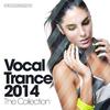 Couverture de l'album Vocal Trance 2014 - The Collection