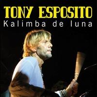 Cover of the track Kalimba de Luna